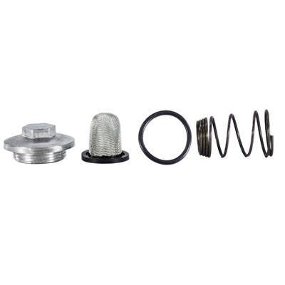 Oil Filter / Oil Drain Plug and Spring Kit - GY6 50cc-150cc Engine