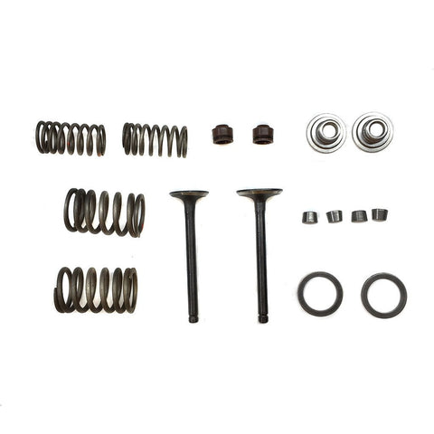 Valve Set With Springs & Clips - 70cc-110cc ATV Engines - Version 2