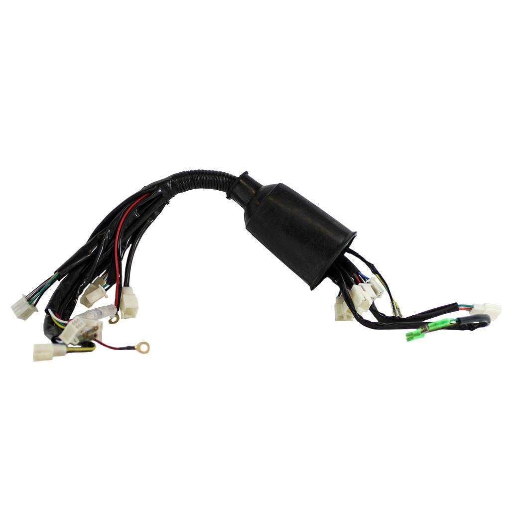 electrical wire harness for tao tao ata110d atv. Black Bedroom Furniture Sets. Home Design Ideas