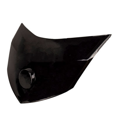 Headlight Cover Decoration Panel for Taotao Quantum 150 Scooter
