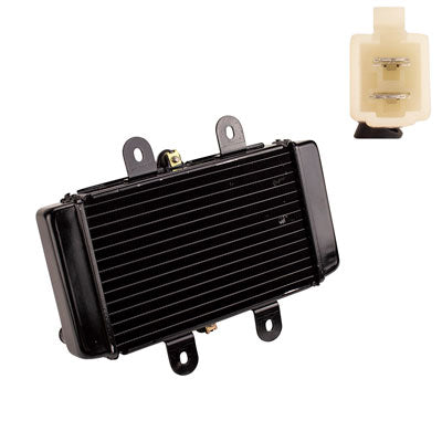 Radiator for Scooter YYZX25025006 250cc Jonway YY250T
