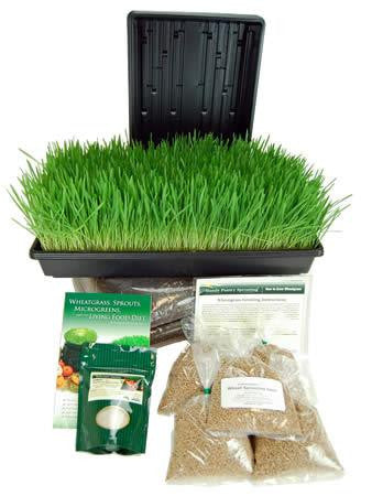 Handy Pantry Organic Wheatgrass Growing Kit WGK-DE