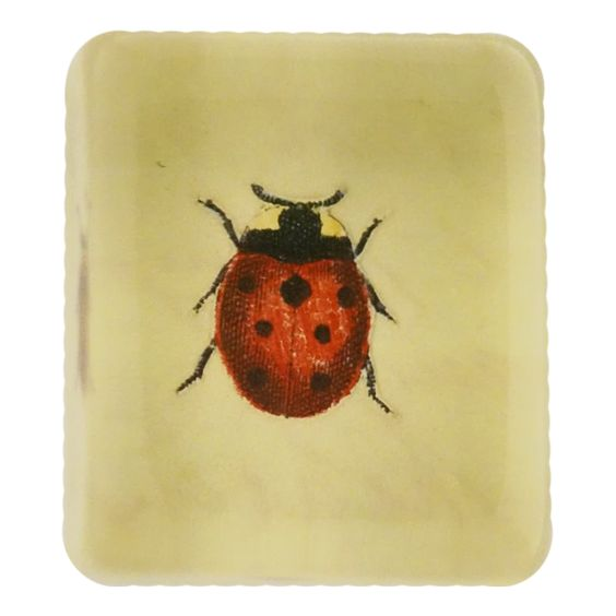 John Derian :: Rectangle Charm Paperweight, Lucky Ladybug