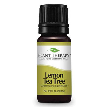 Plant Therapy - Lemon Tea Tree