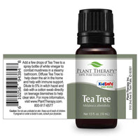 Plant Therapy - Tea Tree Essential Oil 10 mL - Grassroots Baby