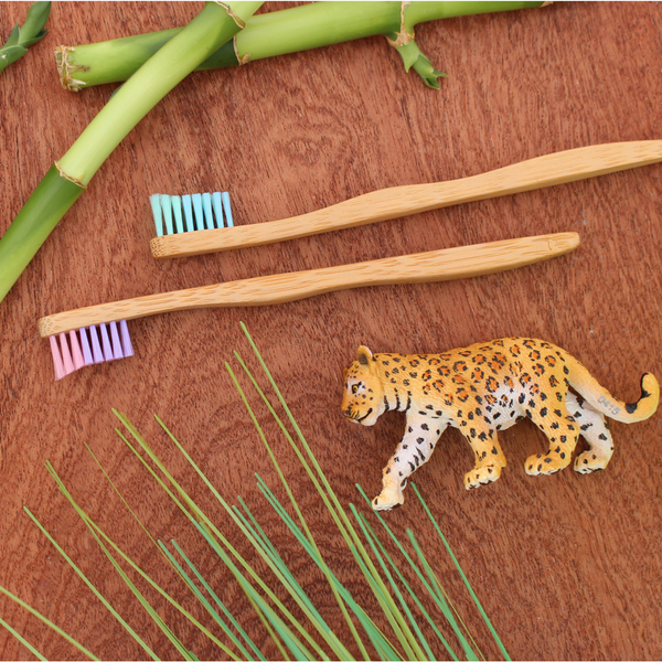 The Future is Bamboo- Kids Bamboo Toothbrush (Individual) - Grassroots Baby