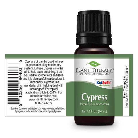 Plant Therapy - Cypress
