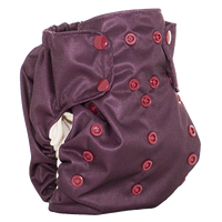 Smart Bottoms - Smart One 3.1 AIO-Smart Bottoms-Martha's Vineyard-Grassroots Baby