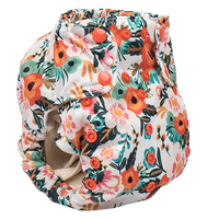 Smart Bottoms - Smart One 3.1 AIO-Smart Bottoms-Ginny-Grassroots Baby