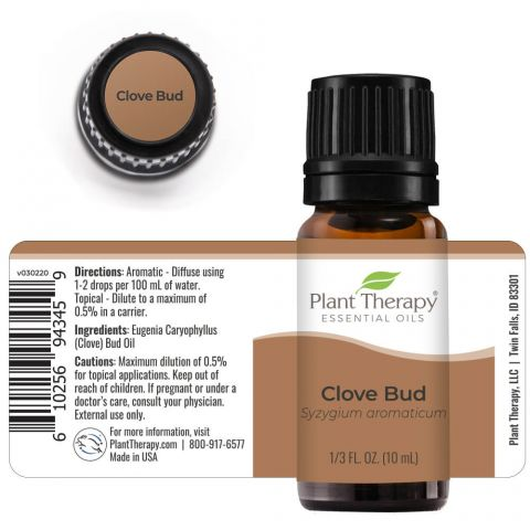 Plant Therapy - Clove Bud
