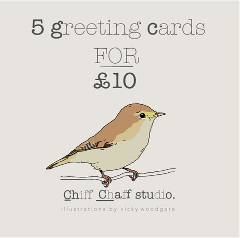5 greeting card bundle.