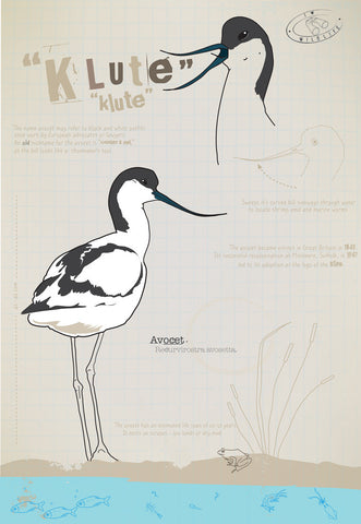 Avocet Ltd Ed. print