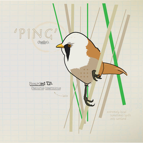 Bearded Tit greeting card.