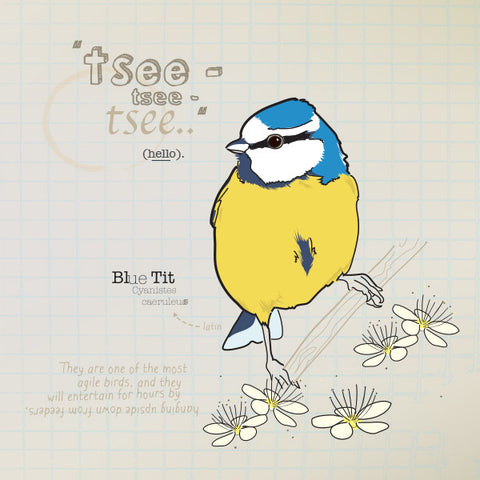Bluetit greeting card.