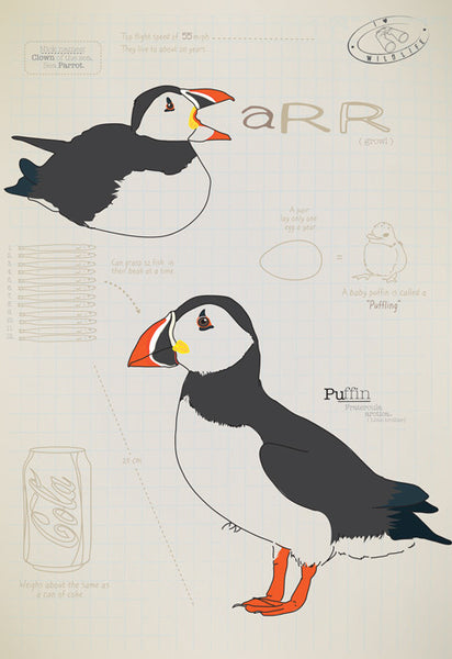 Puffin Ltd Ed. print