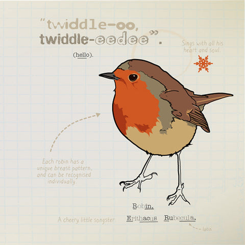 Robin greeting card.