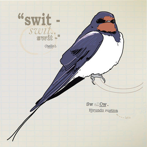 Swallow greeting card.