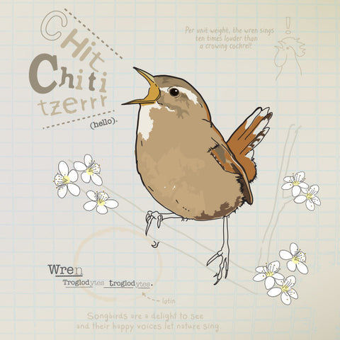 Wren greeting card.