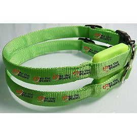 Green Nylon-High Visibility-LED-Waterproof-Light Up Dog Collar in Small or Medium Size
