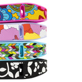 French Bull Designer Band for Fitbit® Flex™ - Ziggy