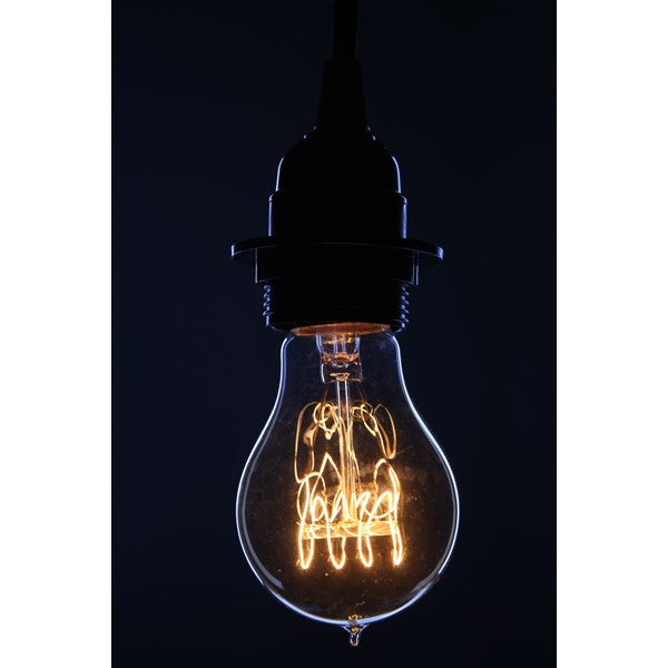 Edison Vintage Antique Bulb - touchGOODS