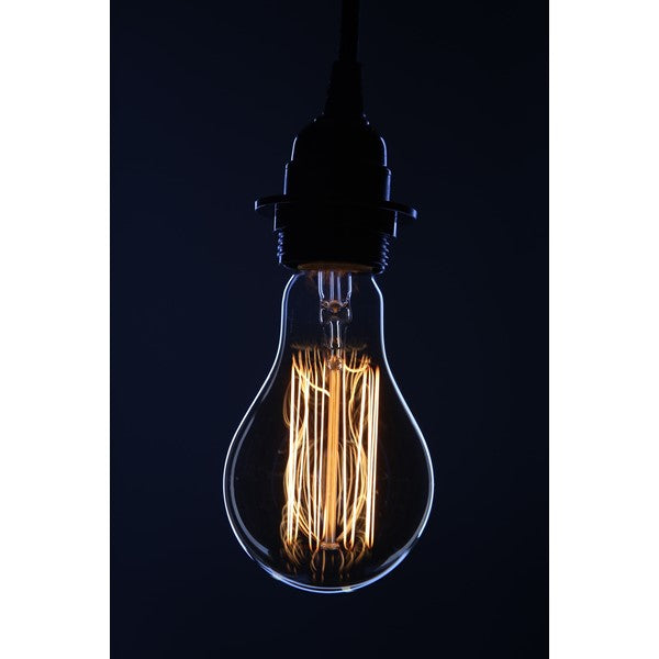 Original Thomas Edison Vintage Antique Bulb