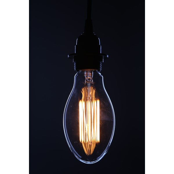 Edison Vintage Antique Bulb | touchGOODS