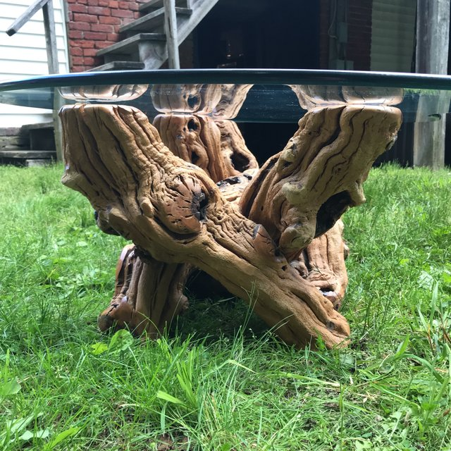 Mid Century Organic Form Vine Root Coffee Table | touchGOODS