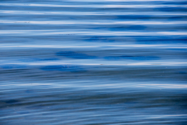 "Blue Waves, 24"" x 36"" 