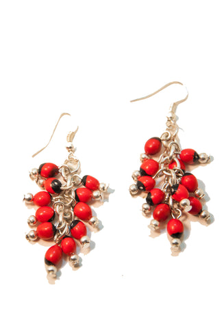 Achira earrings