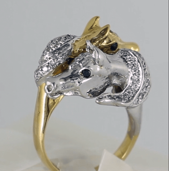 arabian horse ring Copyright and design by Lesley Rand Bennett