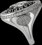 Arabian Horse national champion ring. copyright design handcrafted by Lesley Rand Bennett white gold and diamonds side view.