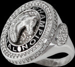Arabian Horse national champion ring. copyright design handcrafted by Lesley Rand Bennett white gold and diamonds alternate view.