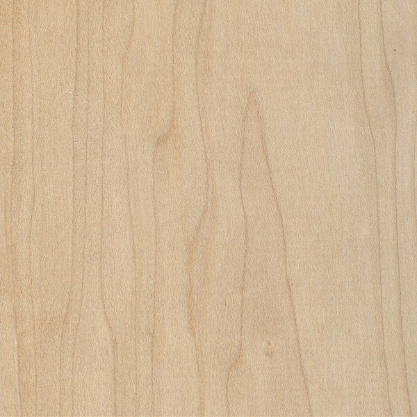 3mm SOLID MAPLE WOOD SHEET - 14.5cm wide