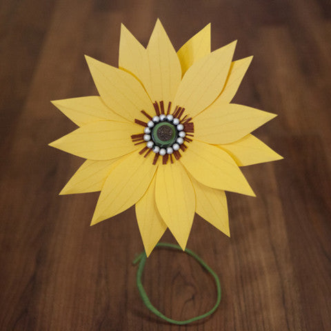 Sunflower - Medium