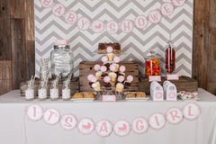 Carriage Baby Shower (Pink/Grey)