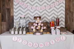 Elephant Baby Shower (Pink/Grey)