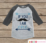 First Birthday Mustache Outfit - Boys 1st Birthday Onepiece or T-shirt - Mustache Grey Raglan Shirt - 1st Birthday - Birthday Raglan Tee