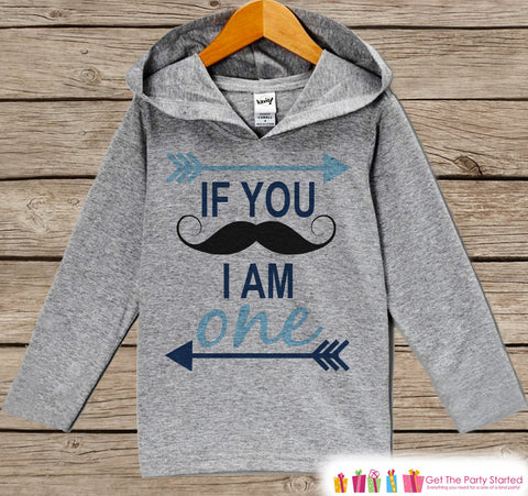 First Birthday Boy Outfit - Kids Hoodie - Mustache Pullover - 1st Birthday Shirt - Boys Mustache Hoodie - Blue Birthday Shirt - Boy Birthday