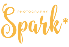 photography spark freelancekit affiliate partner