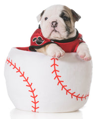 Pet Toys & Accessories Official Licensed MLB