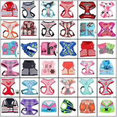 Harnesses All Types & Sizes