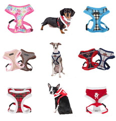 Harnesses- Halter Style