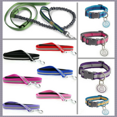 Leashes & Accessories