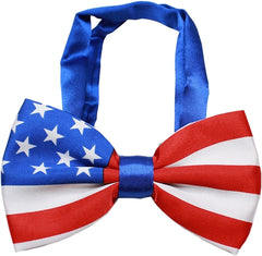 American Flag Bow Tie and Pin Set