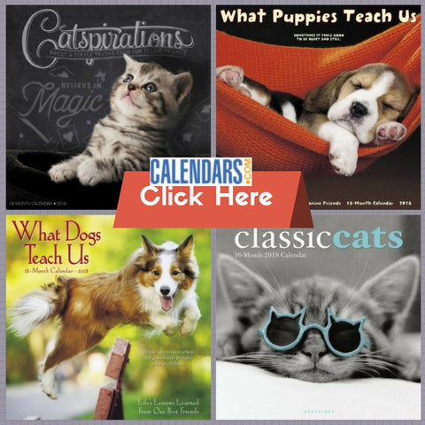 Dog Cat Pet Calendars Daybooks Desk Calendars for Pet Lovers