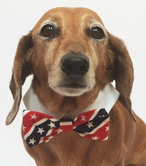 American Flag Stars and Stripes Bow Tie and Dress-up Shirt Collar With Pin