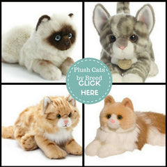 Stuffed Animals for Pet Lovers of Cats and Kittens of all Breeds