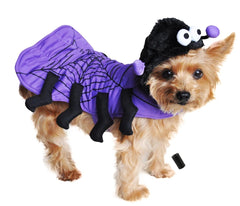 Isty Bitsy Purple Spider Costume for Dogs