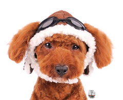 Aviator Hat with Goggles for dogs